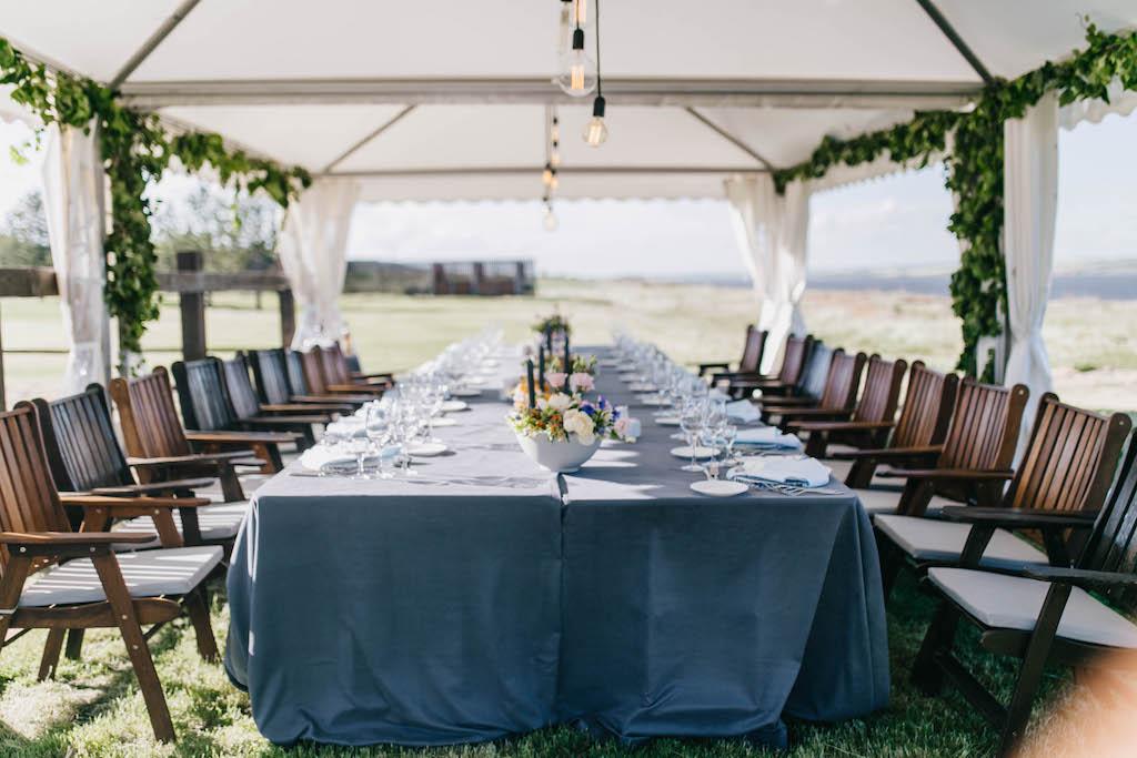 Организация свадьбы в конном клубе Богнатово